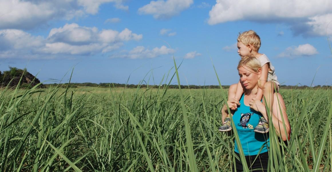 mor og sønn går i natur eng åker