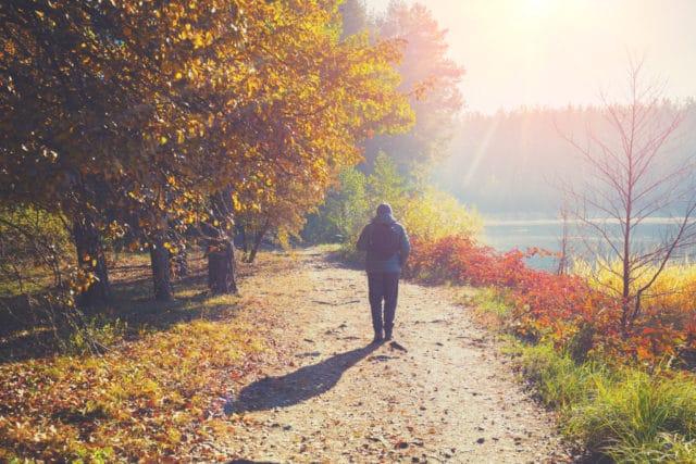 forandring av årstidene, gå tur i vakkert høstvær