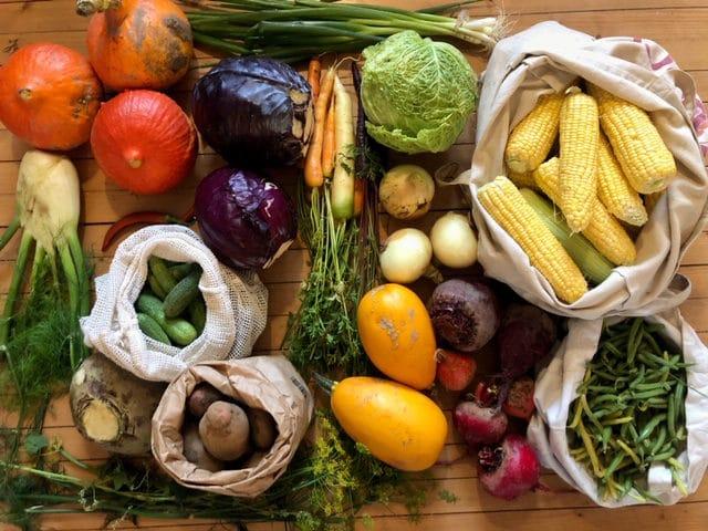 Masse grønnsaker på bordet. Dette er fermentering av grønnsaker